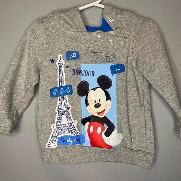 Disneyland Paris sweater with hoodie